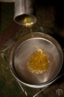 Organic Honey production in San Juan Del Sur