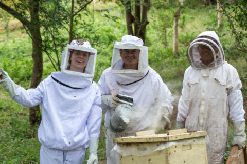 Bee keeping at Finca Las Nubes