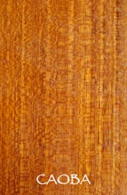 Organic and sustainable hardwood products from Caoba tree